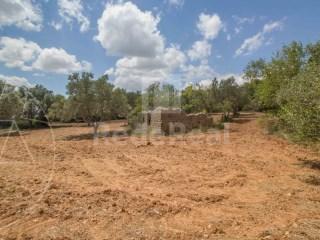 Mixed Land Santa Bárbara de Nexe - For sale