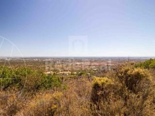 Land Santa Bárbara de Nexe - For sale