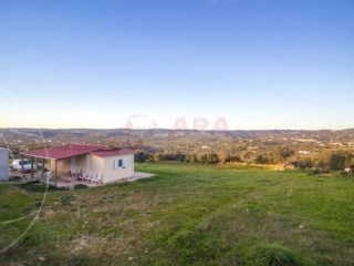 Rural Land Santa Bárbara de Nexe - For sale