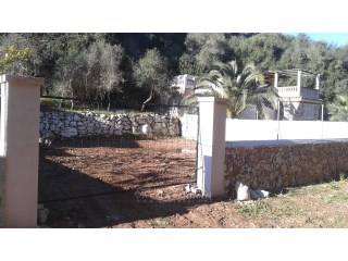 Plot near the beach from Cala Llombarts |