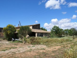 Country house › Campos |