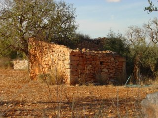 Land › Ses Salines |