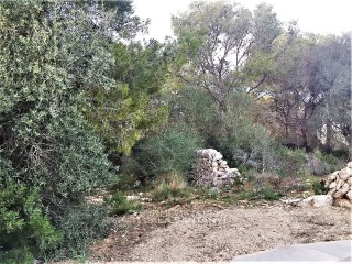 Nice rustic  land, in between Cala Santanyí and Cala Figuera |