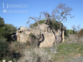 Plot of land with ruin to rebuild in Faro, Algarve |