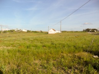Land with 20,000 m2 and housing To Recover, near Almeirim, for sale |