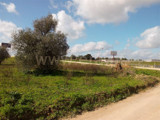 Land with an area of 20,000 m2 for sale |