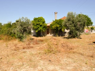 Rustic House › Santarém | 3 Bedrooms