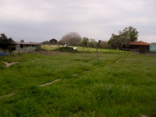 Urban land near Salvaterra de Magos, for sale |
