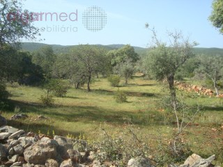 ALGARVE - Loulé - Housing development for sale, with an approved project for 10 townhouses, 5 minutes from Loulé |