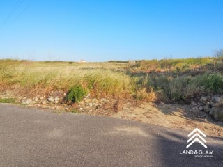Rustic land with building feasibility for a house, 5 minutes from the beach of Samarra. |
