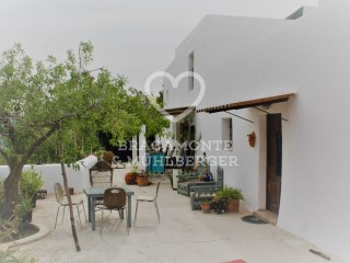 Farm › Sant Joan de Labritja | 3 Bedrooms