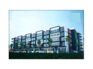 Shop › Gadong B |