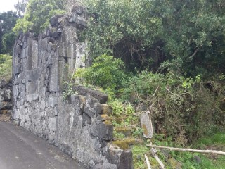 Urban land with total area of 10,567 m2 with a house in Ruins. Pico Island |