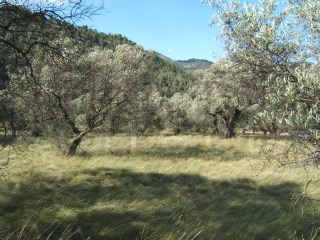 LAND NEAR PAïLS AND NATURAL PARK, GREAT  VIEWS |
