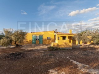 FINCA + 3 BED COUNTRY HOUSE IN L'AMPOLLA - TORTOSA - COLL D'ALBA AREA, GOOD ACCESS + VIEWS | 3 Bedrooms
