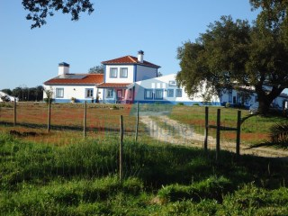 Rural Tourism › Ferreira do Alentejo |