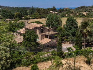 Farm › Valldemossa |