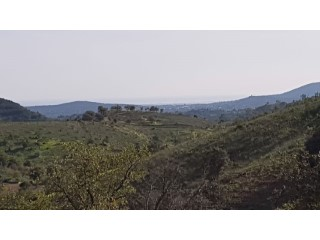 rustic plot with beautifull sea and countryviews in a small valley |