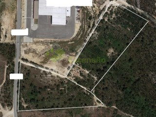 Rustic land, real estate, near Torres Vedras |