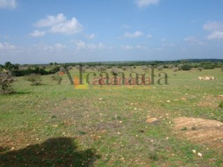 Buildable Plot in Son Serra de Marina |