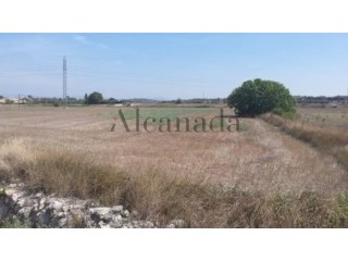 Buildable land in Muro |