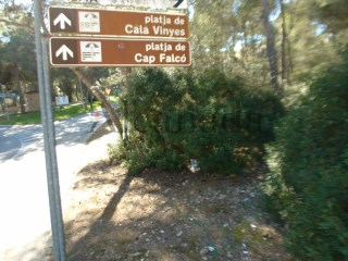 Urban plot for sale in Calvia |