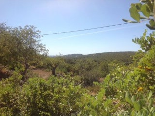 Plot of land with approved project near Loulé. |