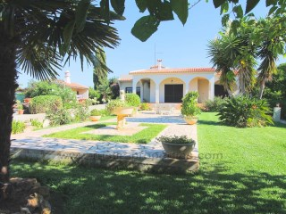 Villa near Faro with 3 bedrooms and a large Orange Grove. RPS1264V | 3 Bedrooms