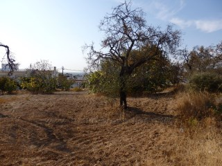Land for construction of two villas with sea view in Almancil. RP1280P |