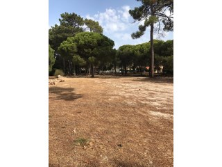 Plot of land to build in Vilamoura. RPS1285P |