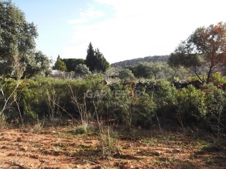 Rustic land composed of three articles with 27,600 m2; 39,370m2 and 8,740m2