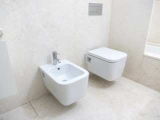 Shared bathroom%152/176