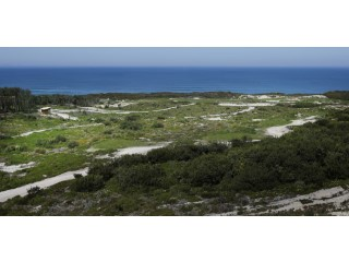 West Cliffs Ocean and Golf Resort%37/63