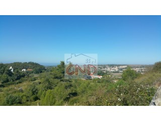 Land in Sintra 1560 m2 area to 100% funded |