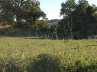 Rural Land › Lagoa (Algarve) |