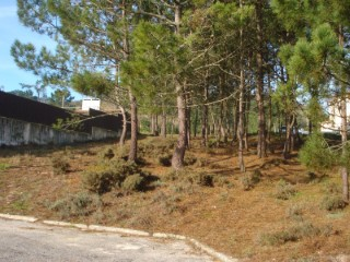 Terreno - Salir do Porto |