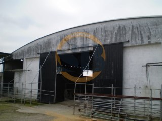 Warehouse › Estarreja |