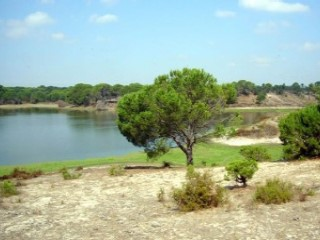Country Estate › Montijo |