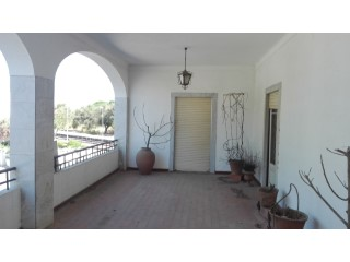 Two-flat House › Alvito | 3 Bedrooms | 2WC