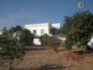 Farm with 81,000 m2 with sea and mountains | 3 Bedrooms