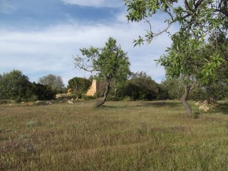 Excellent plot of land with ruin near Albufeira |