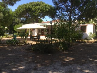 Super Deal in the Centre of Vilamoura |