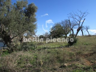 Plot of land for building House 4 bedrooms, on the outskirts of Olhão |