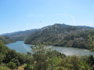 Terreno com 3,450 m2 no Douro |