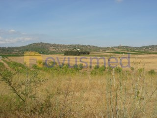 Rural Land › Silves |