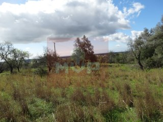 Rustic land in Moncarapacho |