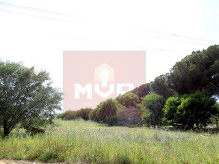 Rustic land in Quarteira |