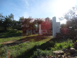 Rustic land in Pereiro |