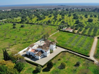 Country Estate Near the Beach (Sea Views), Tavira / Terracottage |