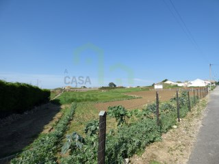 Land with excellent sun exposure South facing, inserted in the urban, 12 km from Ericeira and 10 km from Sintra. Possibility of exchange for apartment in Ericeira. |